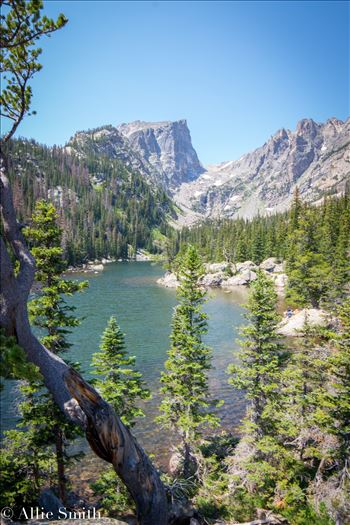 Bear Lake Trail -